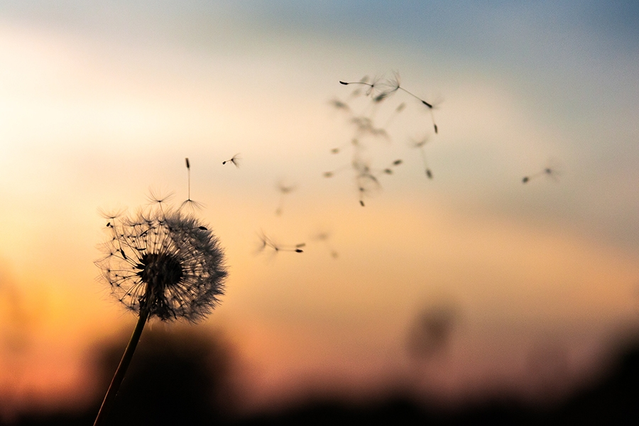 Cashflow Freedom – The 7 Causes of Poor Cashflow